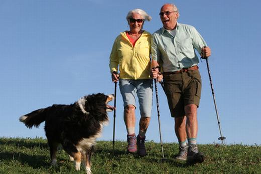Tiere-und-senioren in Tiere und Senioren